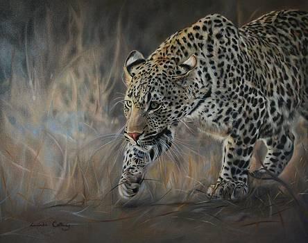 Velvet tread - leopard  by Lucinda Coldrey