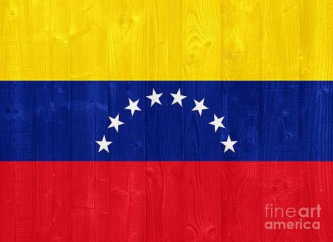 Venezuela flag by Luis Alvarenga