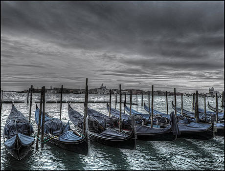 Venice at Rest by Alfredo Machado