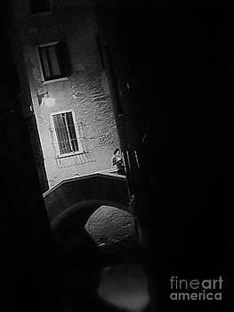 Venice By Night by J J  Everson