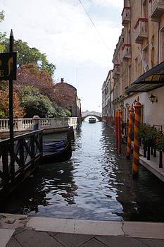 Venice Dock by Debi Demetrion