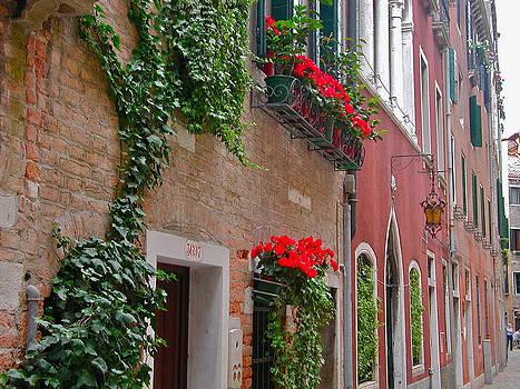 Venice Flower Boxes by Leslie Brashear