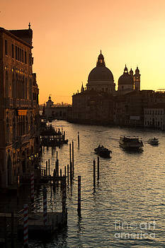 Venice in the Morning by Tom Hard