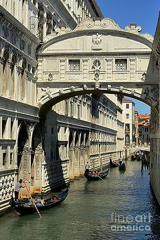 Venice by Mats Bjoerklund