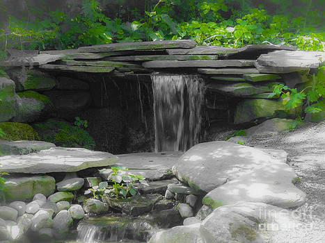 Kathryn Strick - Verde Falls