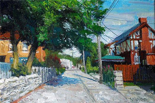 Veri-fine Alley by Dale Knaak