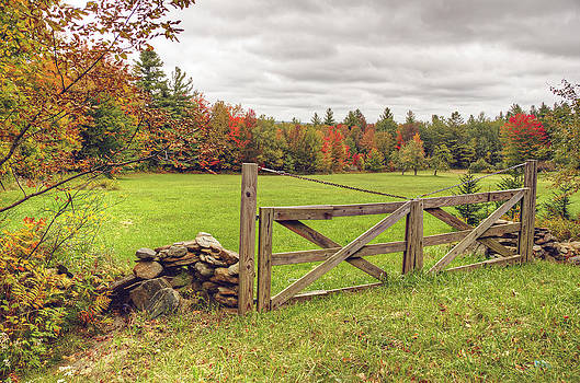 Vermont Countryside by Donna Doherty