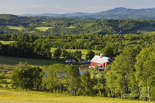 Vermont Summer Landscape by Alan L Graham
