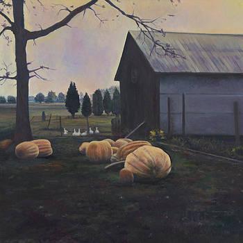 Very Big Pumpkins by David P Zippi