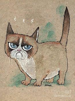 Angel  Tarantella - very grumpy cat