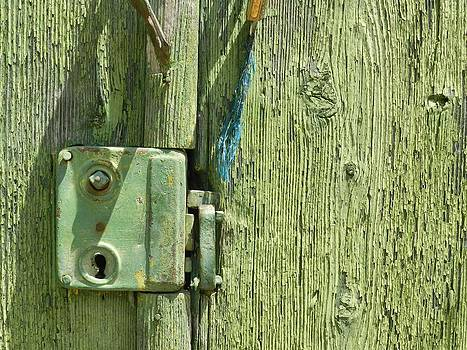 Ion vincent DAnu - Very Old Door Lock