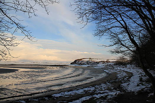 Vestiges of snow by Jenny A Jones