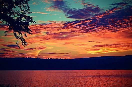 Vibrant Sky by Sharon L Stacy