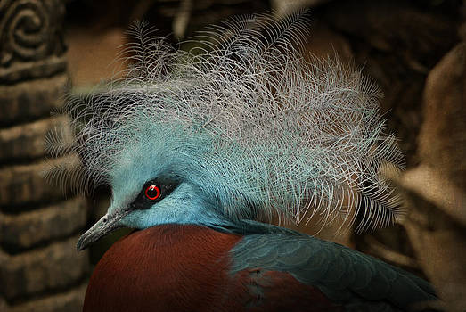 Victoria Crowned Pigeon in tribal decor by Steppeland -