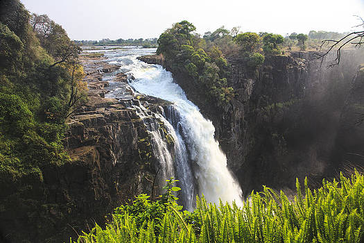 Victoria Falls South Africa 274 by Larry Roberson