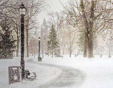 Victoria Park by Garvin Hunter