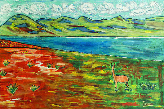 Vicuna from Laguna Miscanti by Rafael Fischer