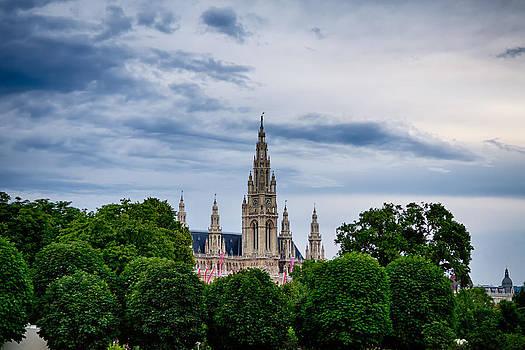 Vienna Rathaus by Viacheslav Savitskiy
