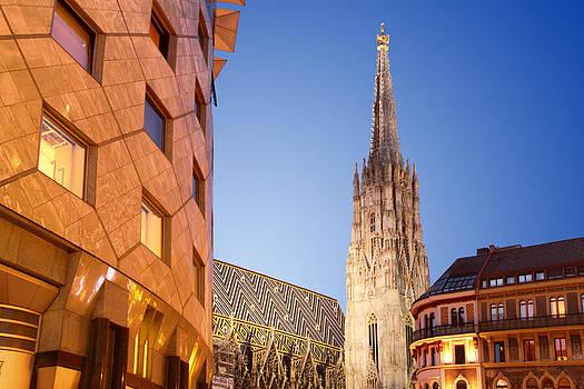 Vienna - St. Stephen's Cathedral by Marc Huebner