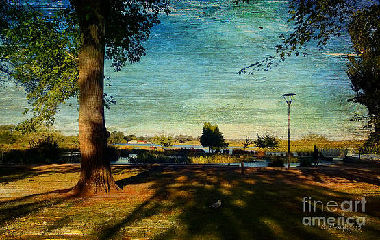 Views from the Lake iv - Evening shadows by Chris Armytage