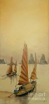 Vietnam by Sorin Apostolescu