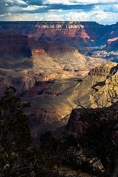 View Across the Canyon by Ed Gleichman