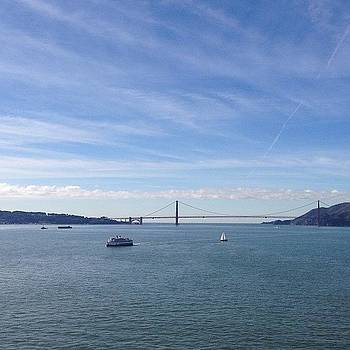View From Alcatraz by Mandy Wiltse