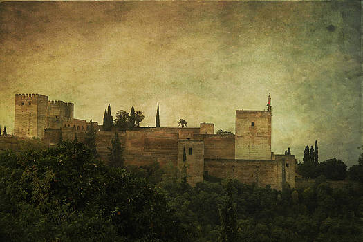 View from Alhambra by Armine Nersisyan