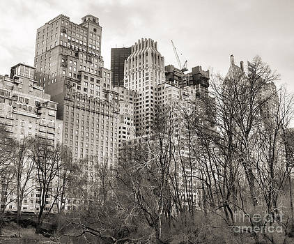 Chuck Kuhn - View from Central Park