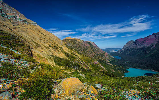 View from Grinnell Glacier by Ranjana Pai