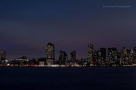 View From Manhattan by Tone Garot