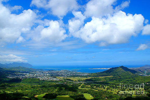 View from the Pali by Angela DiPietro