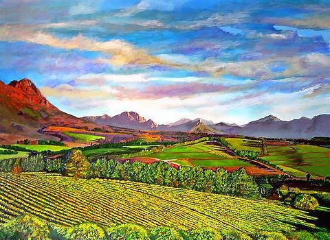 Michael Durst - View from Warwick Vineyard