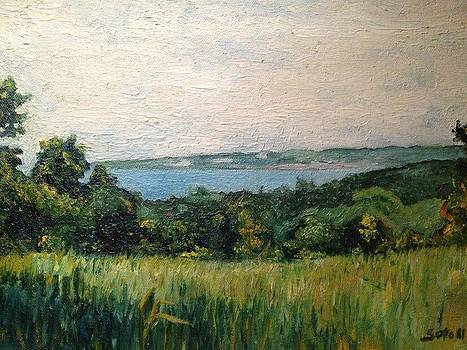 View of Aguadilla Bay  by Victor SOTO
