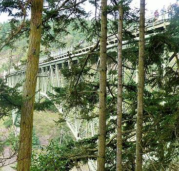 View of Deception Pass Bridge from Down Under by Ann Michelle Swadener