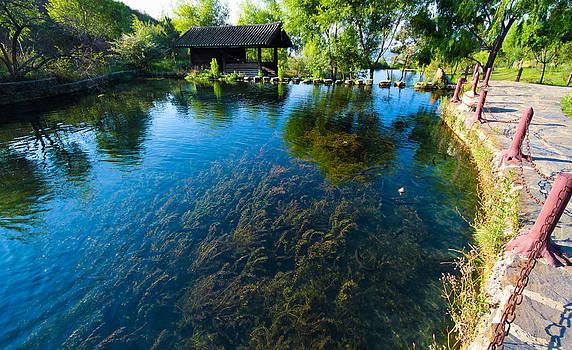 View of Jade Water Village at Lijiang Yunnan China. by Calvin Chan