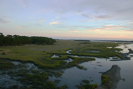 View of Marsh by Jessica Snyder