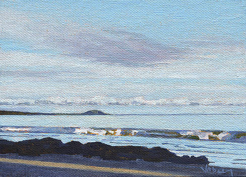 Stacy Vosberg - View of Puu Olai