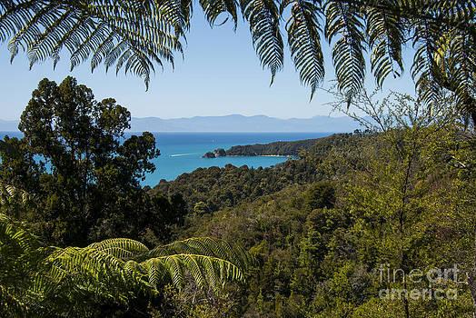 Bob Phillips - View of Tasman Sea