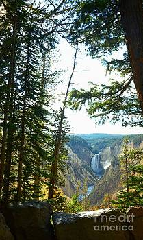 View Of The Canyon by Kathleen Struckle