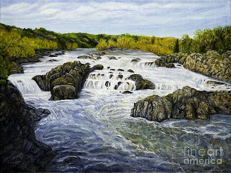 View of the Falls at Great Falls Park by Gail Darnell