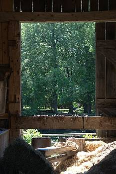 Valerie Kirkwood - View Through the Barn