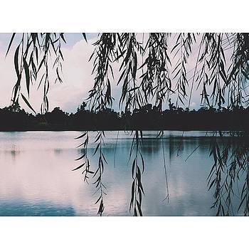 Views by Blake Fountain