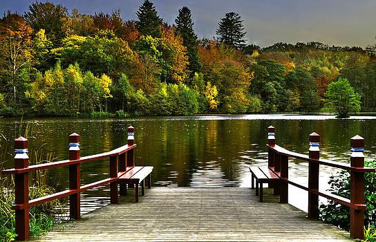 Villa Gallina Autumn Colors Denmark by Henrik Petersen