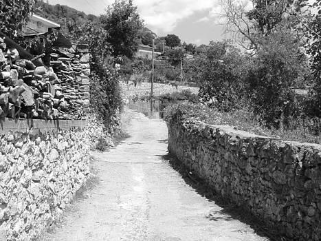 Village Road by Angela Zafiris