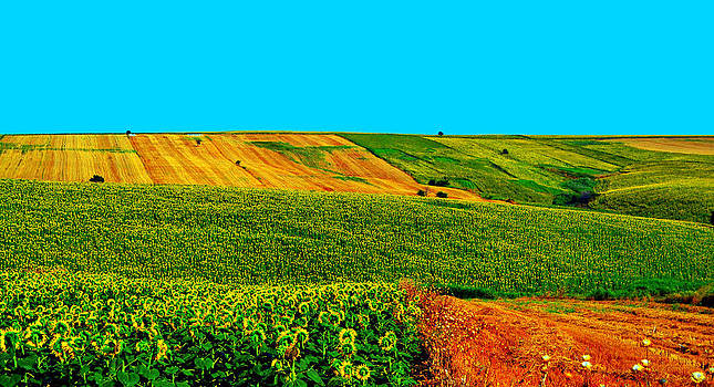Vincent van Gogh's Inspiration by Zafer Gurel