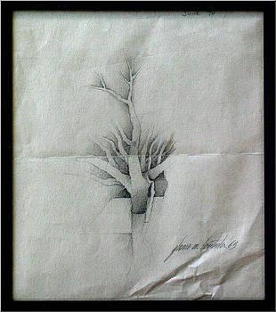 Glenn Bautista - Vine and Branches A 1969