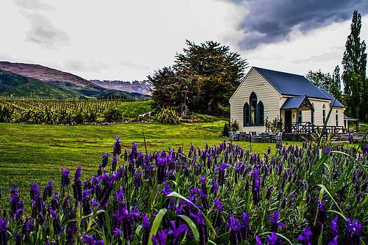 Vineyard Cottage by Dean Chytraus