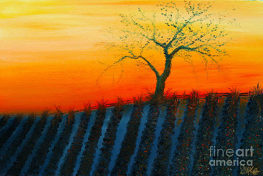 David Kacey - Vineyard