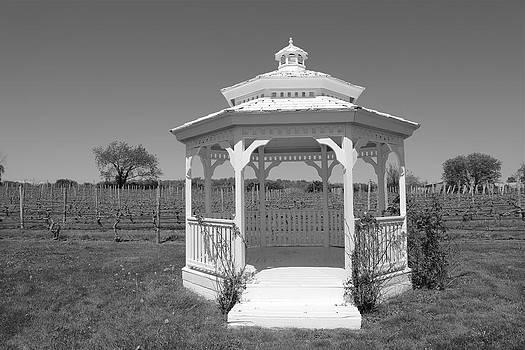 Vineyard Gazebo by Frank Freni